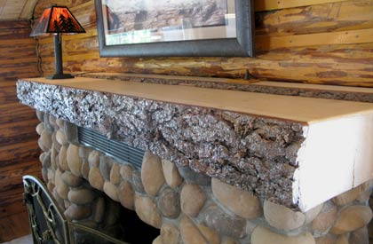 Guest Cabin Hearth